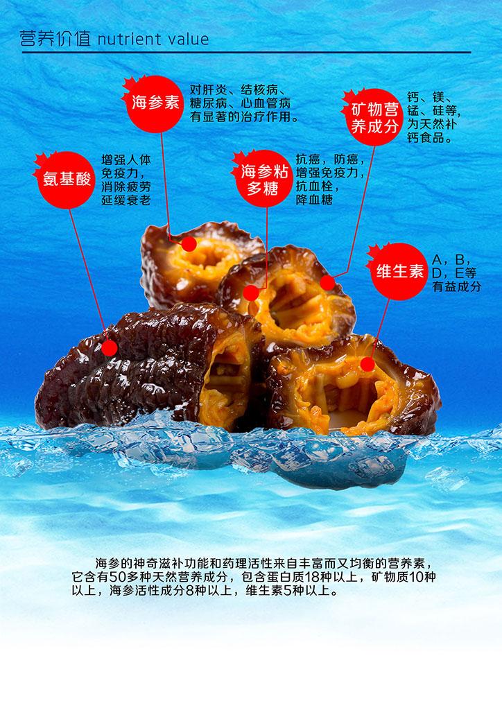 加拿大北极野生海参销售推广手册5.jpg