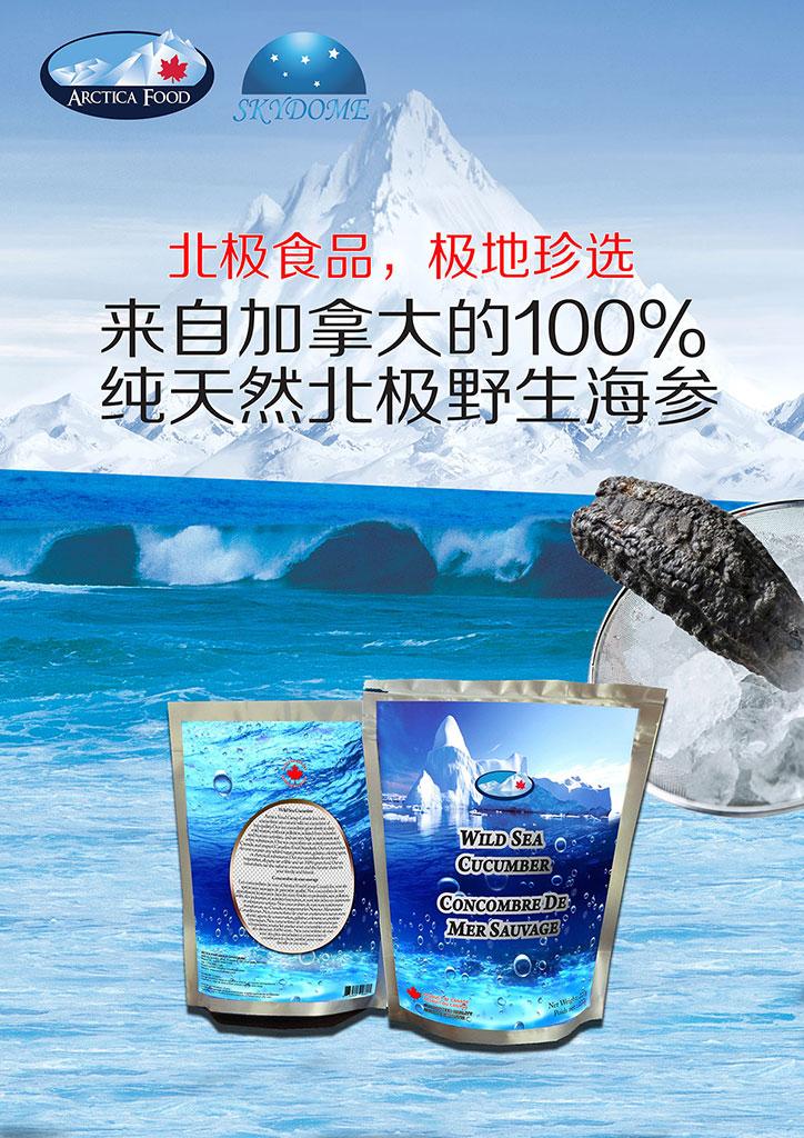 加拿大北极野生海参销售推广手册01.jpg