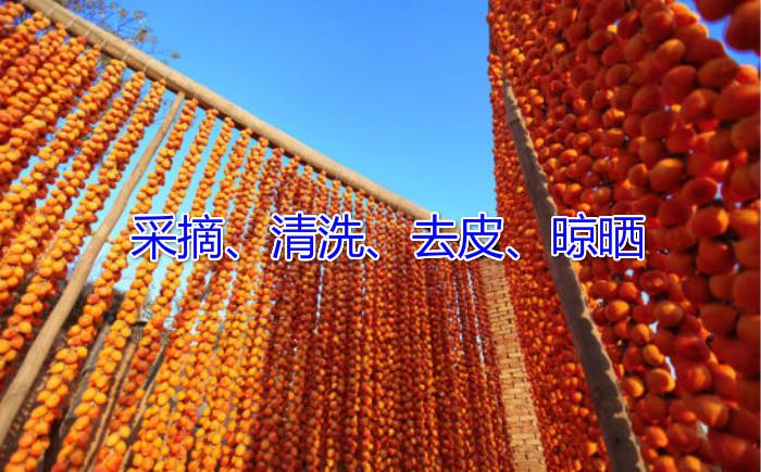 柿饼图2.jpg