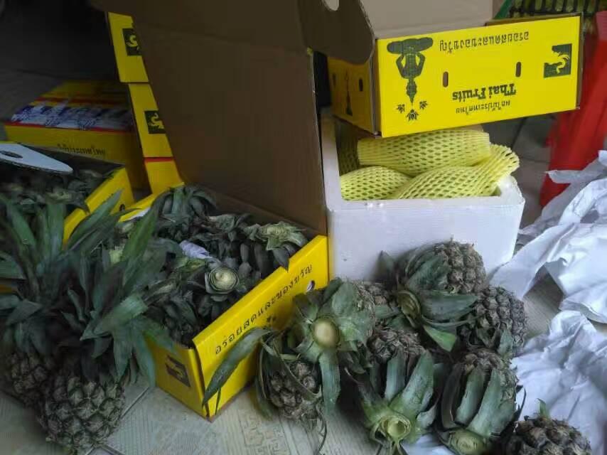 泰国小菠萝2.jpg
